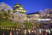 Koriyama Castle — Stock Photo