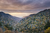 Smoky Mountains National Park — Stock Photo