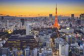 Tokyo Japan at Minato — Stock Photo