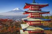 Mt. Fuji in the Fall — Stock Photo