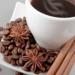 Stock Photo: Coffee, grains,cinnamon ,anise on grey