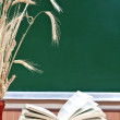 Stock Photo: Book exposed on background school board