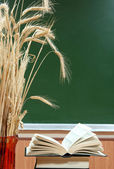 Books and vase with the ears of wheat on a background a school b — Stock Photo