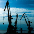 Stock Photo: Cranes in the Harbor at sunset