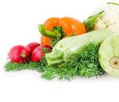 Pepe, ravanelli, midollo vegetale e cavolfiore bianco — Foto Stock