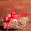 Easter egg in the nest with a red ribbon on the wooden backgroun — Photo