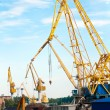 Cranes in seaport — Stock Photo