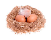 Three yellow balls with a feather in the nest isolated — Stock Photo