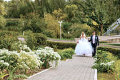 Bride and groom go together on the road in the park — Stock Photo