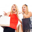 Ecstatic women shopping — Stock Photo #14339743