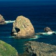 Nugget Point rocks and ocean in New Zealand — Stock Photo