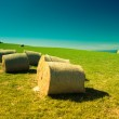 Hay bales in New Zealand — Stock Photo #19990887