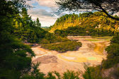 Geothermal landscape in New Zealand — Stock Photo