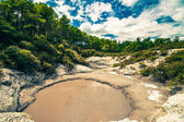 Thermal mud pool in New Zealand — Stock Photo