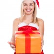 Ecstatic Christmas woman with present — Stock Photo #29495563
