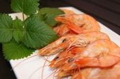 Prawns cooked in a dish — Stock Photo