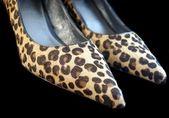 革の靴 — ストック写真