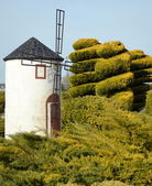 Old windmill in Spain — Stock Photo