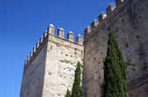 Outer wall , Real Alcazar of Jerez — Stock Photo