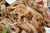 Typically Spanish Seafood — Stock Photo