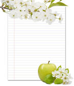 Beautiful designer background with the sprigs of flowering and apple — Foto Stock