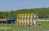 Gas pipeline — Stock Photo