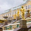 Peterhof Palace. Grand Cascade fountains on a rainy day — Stock Photo