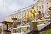 Peterhof Palace. Grand Cascade fountains on a rainy day — Stock Photo