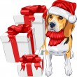 Vector dog Beagle in the hat of Santa Claus with Christmas gifts — Stock Vector #15473703