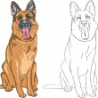 Vector Coloring Book of smiling dog German shepherd — Stock Vector