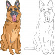 Vector Coloring Book of smiling dog German shepherd — Stock Vector #17394055