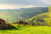 Spring landscape in the Carpathian mountains with fence — Stock Photo