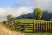 The picturesque little farm in the Carpathian Mountains, Mizhhir — Stock Photo
