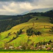 Stock Photo: Spring rural landscape in Carpathimountains
