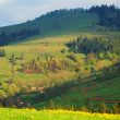 Multicolored diagonal Carpathian Mountains — Stock Photo