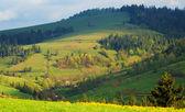 Multicolored diagonal Carpathian Mountains — Stock Photo