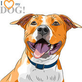 Vector sketch smiling dog American Staffordshire Terrier breed — Stock Vector