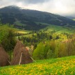 Spring landscape in the Carpathian mountains — Stock Photo