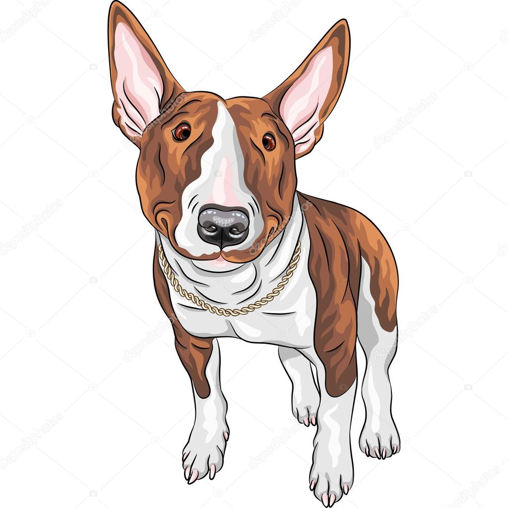 Vektorové usměvavá kreslený bulteriér pes plemene — Stock ...
