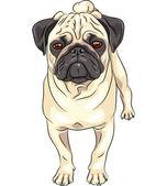Vector sketch cute dog pug breed — Stock Vector