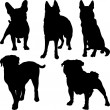 Vector silhouettes of different breeds of dogs in various poses — Stock Vector