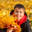 Happy smiling boy with autumn leaves — Stock Photo