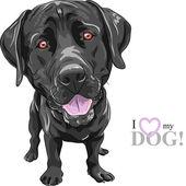 Vector funny cartoon black dog breed Labrador Retriever — Wektor stockowy
