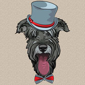 Vector funny cartoon hipster dog Schnauzer — Stock Vector