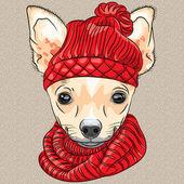 Vector cartoon hipster dog Chihuahua breed smiling — Stock Vector