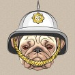 Vector funny cartoon dog pug in the British helmet — Stock Vector