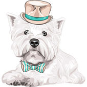 Vector dog West Highland White Terrier breed in hat and bow tie — Wektor stockowy