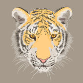 Vector closeup portrait of a serious tiger — Stock Vector