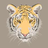 Vector closeup portrait of a serious tiger — Stock Vector