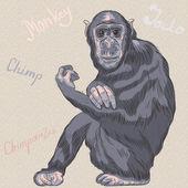 Vector funny cartoon monkey Chimpanzee — Stock Vector